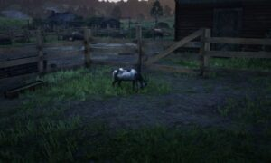 Alpine Goat Place Red Dead Online
