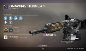 Destiny 2 Gnawing Hunger God Roll