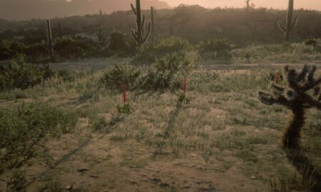 Red Sage Place Red Dead Online