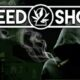 Weed Shop 2 Game PC Full Version Free Download
